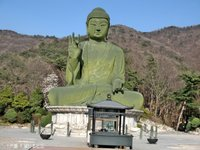 觉愿寺 的封面