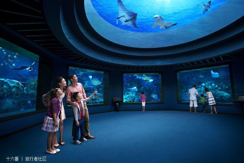 e.a 海洋馆 的照片