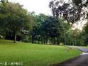 三巴旺公园的封面