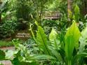 武吉知马自然保护区的封面