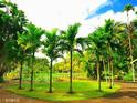 皇家植物园(毛里求斯)的封面