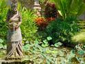 巴厘岛艺术宫美术馆的封面