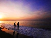 美奈海滩的封面