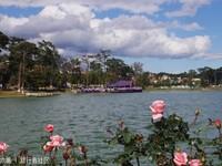 春香湖的封面