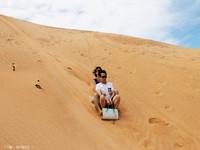 红沙丘的封面