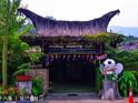 槟城蝴蝶公园的封面