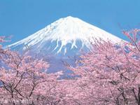 富士山的封面