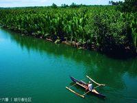 罗博河的封面
