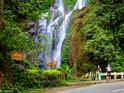 塔玛劳瀑布的封面