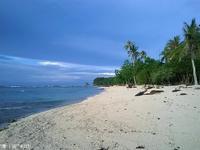 Pangubatan Beach的封面
