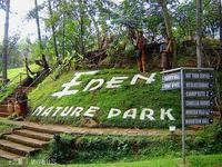 艾顿国家森林公园的封面