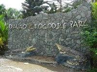 达沃鳄鱼公园的封面