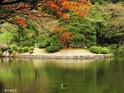 小石川后乐园的封面