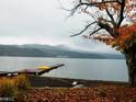山中湖  的封面