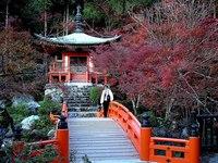 醍醐寺的封面