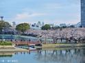 毛马樱之宫公园的封面