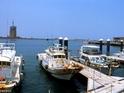 梧栖渔港的封面