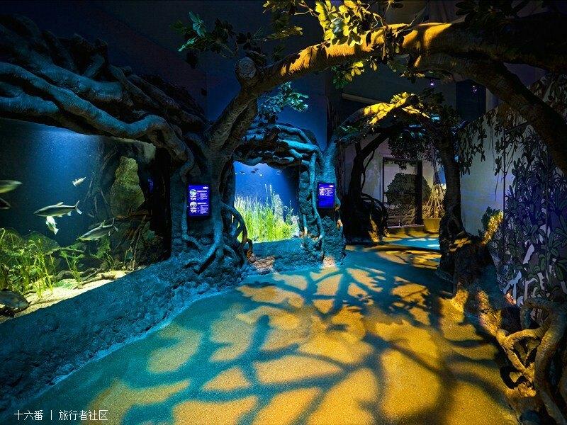 澳大利亚国家动物园和水族馆