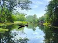 西溪国家湿地公园的封面