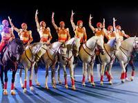 长隆国际大马戏正门-游客服务中心的封面