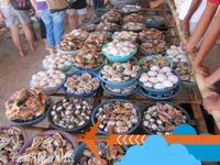 薄荷岛海鲜市场的封面