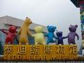 泰迪熊博物馆的封面
